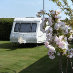 Caravan Close Up With Flowers Angle 2