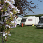 Caravan Close Up With Flowers