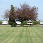 Caravan Park Greenary