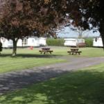 Caravan Park Under Tree Shade
