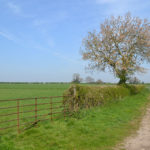 Surrounded By Countryside Walks